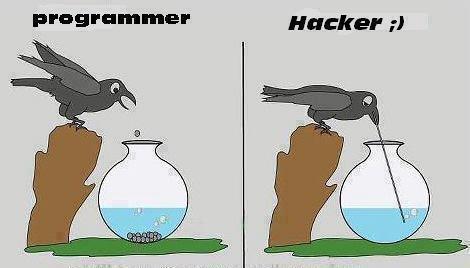 Разница между программистом и хаккером