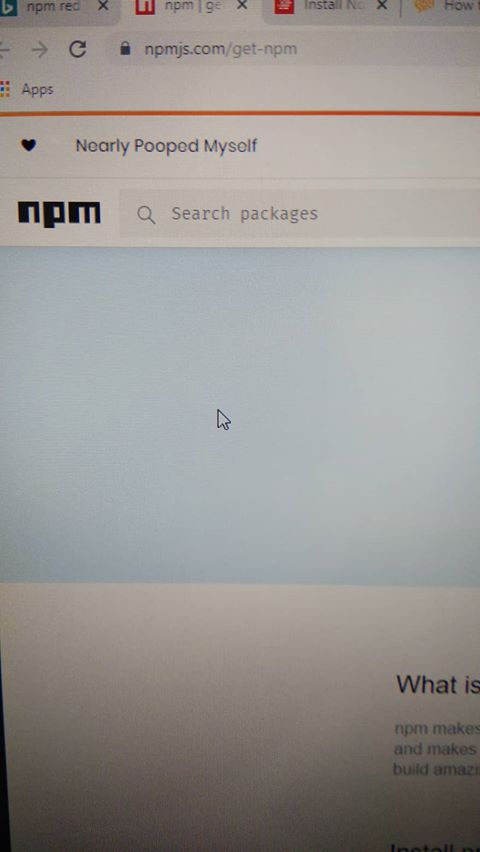 Found a funny npm expansion