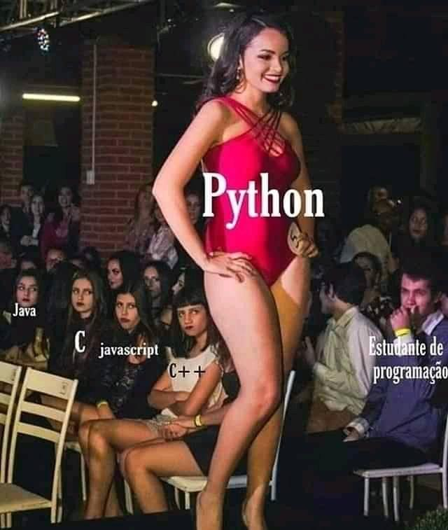 Only Python developer understand